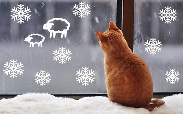 Котик смотрит на новогоднее окно