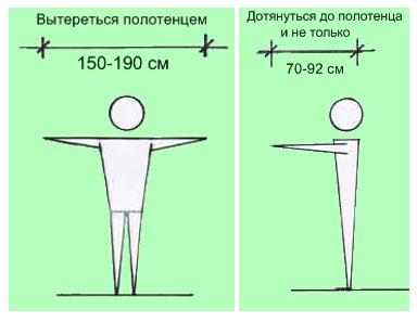 Размеры вытянутых рук человека