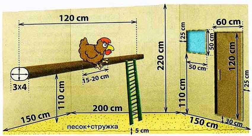 Стандартное расстояние внутренних элементов курятника
