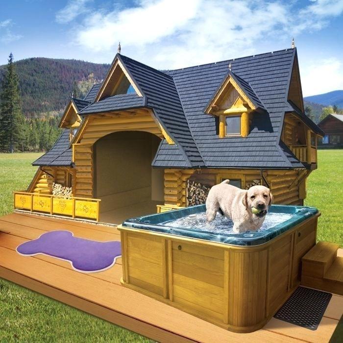 Будка с бассейном для собаки