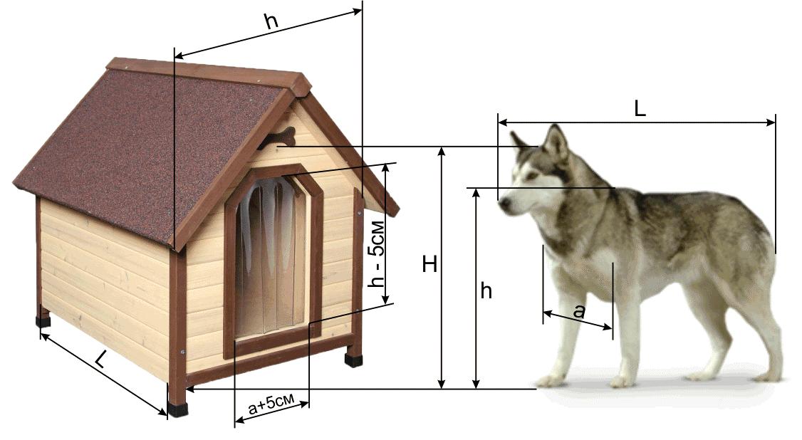 Размеры, учитываемые при строительстве будки