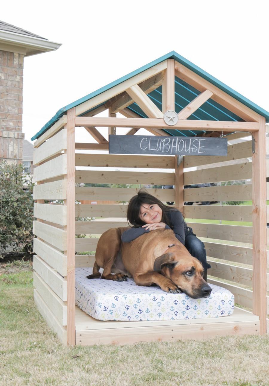 Собачья будка готова