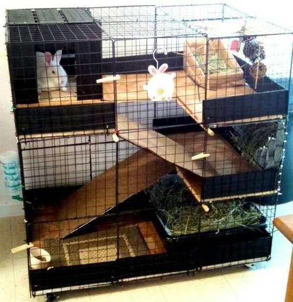 Многоярусная клетка для кроликов
