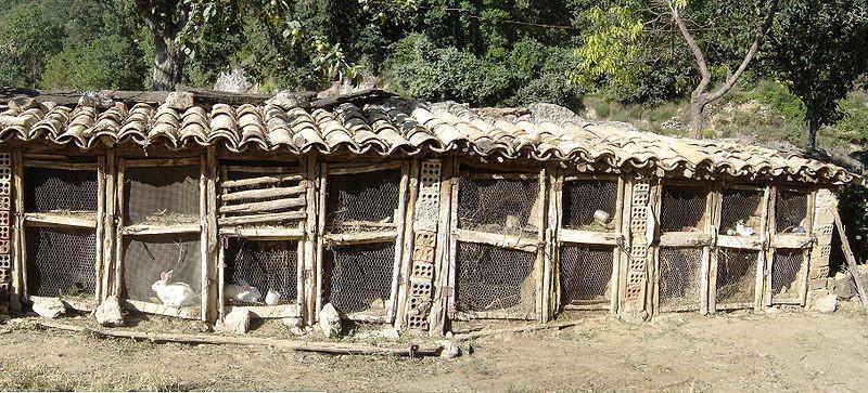 Традиционный крольчатник в Испании