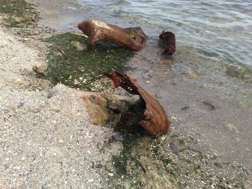 Сваи в морской воде