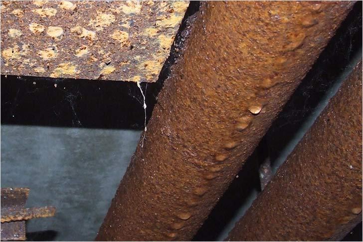 Конденсат на трубах холодной воды: причины появления и способы устранения