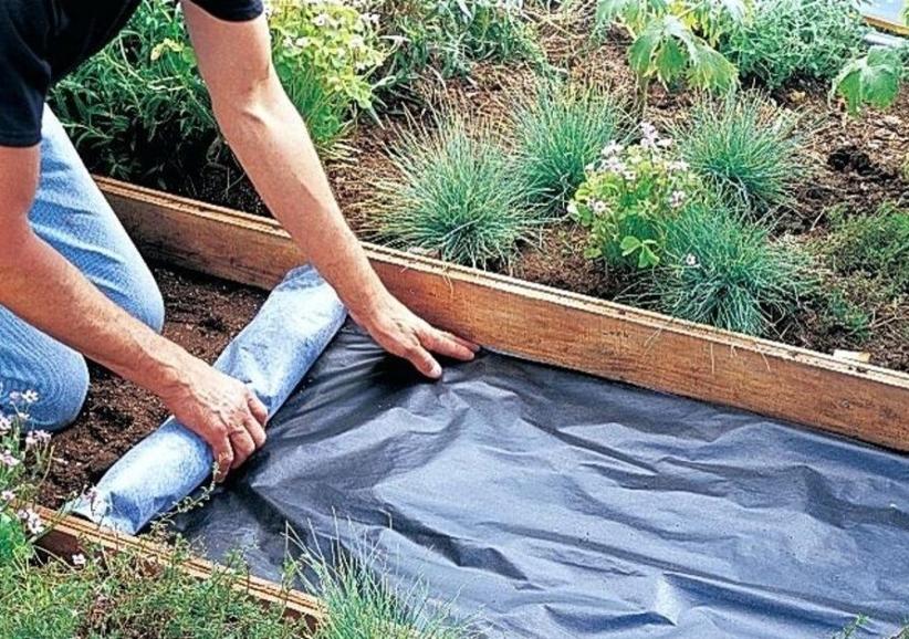 Деревянные дорожки на даче своими руками: пошаговая инструкция с фото